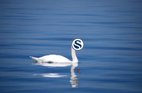 SwanBitcoin acquires Swan.com domain name